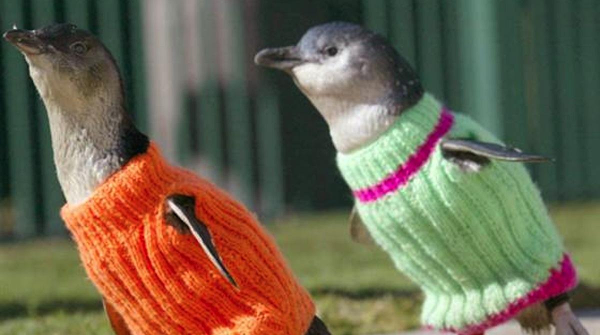 trico_passo_a_passo_pinguins_2